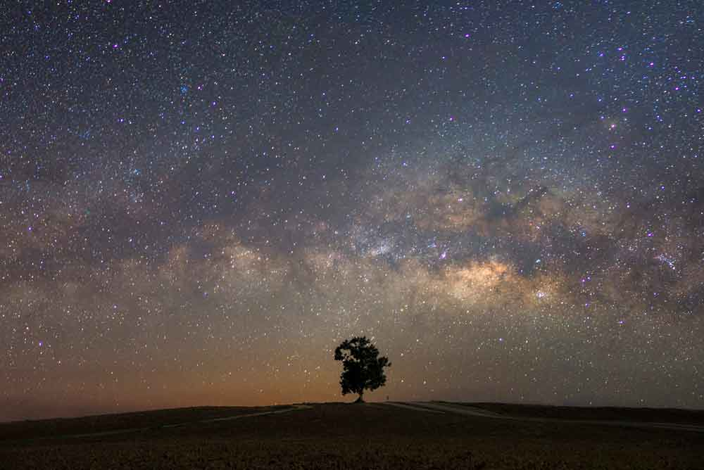 Beautiful dreamy milky way with a single tree and night starry sky.
